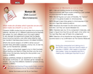 M06: DNA Caught Masterminding